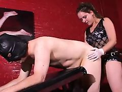 Mistress fucks slave with strapon 7